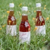 Spritzer Schilcherspritzer Schilchermischung, vegan, Weingut Jöbstl, Schilcherei, Weststeiermark online kaufen